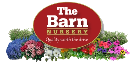 The Barn Nursery in Olympia WA